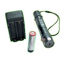 200 Mw Black Lion Green Laser