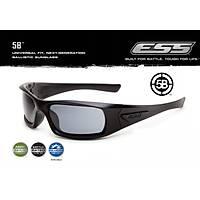 ESS 5B - Black Frame Smoke Gray Lenses