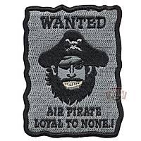Wanted Taktik Peç