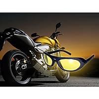 RAWHIDEYT MOTORCYCLE GOGGLES