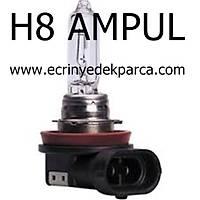 H8 AMPUL
