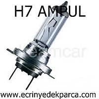 H7 AMPUL