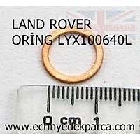 LAND ROVER DÝSCOVERY ORÝNG LYX100640L