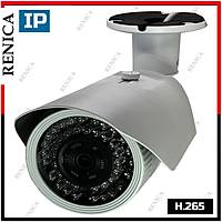 Renica IP-E2661 3 MP 42 Led 3.6 MM Lens SONY IMX307 Sensor Metal Kasa H.265 IP Kamera - 1820R