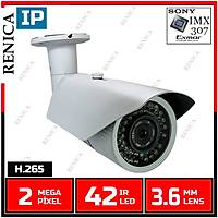 Renica IP-E2661 2 MP 42 Led 3.6 MM Lens SONY IMX307 Sensor Metal Kasa H.265 IP Kamera - 1820R
