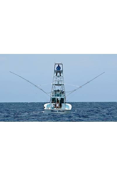 Taco Marine Gümüþ Outrigger 366 cm