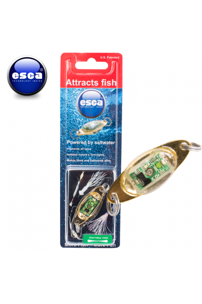 ESCA Lure Light