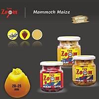 Cz 2342 Mammoth Maize Bal
