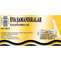 Eva Þamandýra 6 Gr.