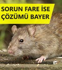Bayer Fare Ýle Mücadele