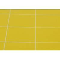 Yapışkanlı Sinek Tutucu Levha 30x60