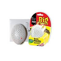 Big Cheese Ultrasonik Fare Kovucu Oda Tipi 150m2 etkili