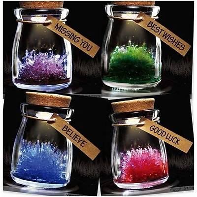 Büyüyen Kristal - Crystal Garden