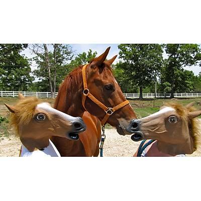 At Kafasý Maskesi - Horse Head Mask