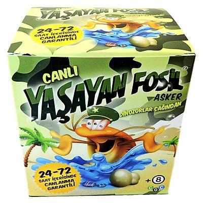 Yaþayan Fosil Asker - Canlý Asker Triops Yetiþtirme Kiti
