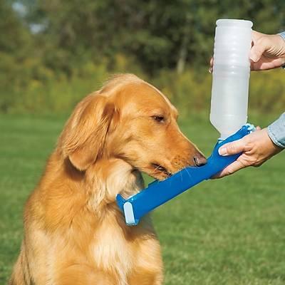 Dog Water Bottle Pratik Köpek Suluðu