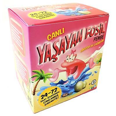 Yaþayan Fosil Pembe - Canlý Pembe Triops Yetiþtirme Kiti