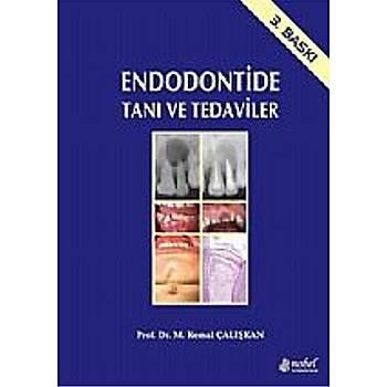 Nobel Týp Kitabevleri  Endodontide Taný ve Tedaviler