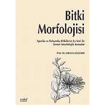 Nobel Týp Kitabevleri Bitki Morfolojisi Sporlu ve Tohumlu Bitkilerin Evrimi ile Temel Morfolojik Konular