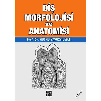 Gazi Diþ Morfolojisi ve Anatomisi Hüsnü Yavuzyýlmaz
