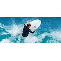 "BIC SURF SUPER-FROG 6""4 WEGG SF"
