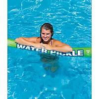 WOW WATER PICKLE 10 PACKAGE - W/POS PKG