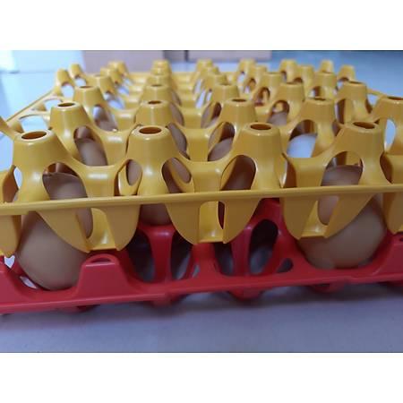 Plastik Yumurta Viyolü 30 Yumurta Kapasiteli 33 x 33 cm Sert ve Esnektir
