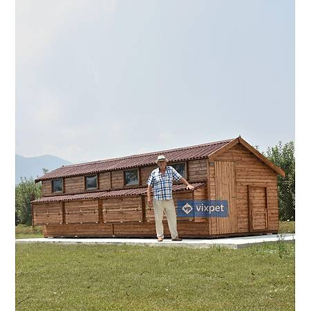 Montana XXL Tavuk Kümesi 200 Tavuk Barýnabilir