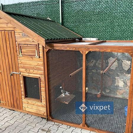 Harvey Güvercin Kümesi 15 Çift Kapasiteli