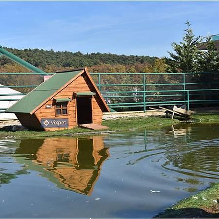 Lake Ördek Evi 4-5 Ördek Barýnabilir