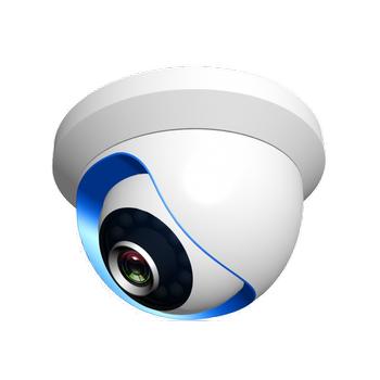 NTA-IPC02 IP Dome Kamera - Alarm Sistemine Uygun