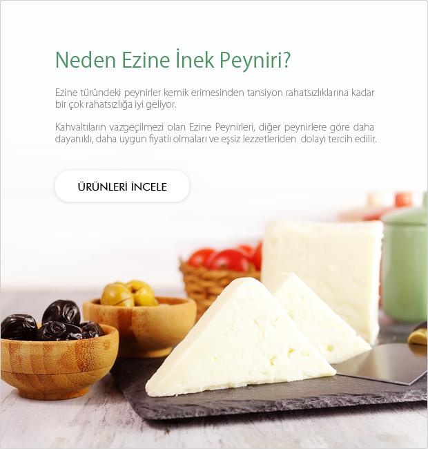 Ezine İnek Peyniri