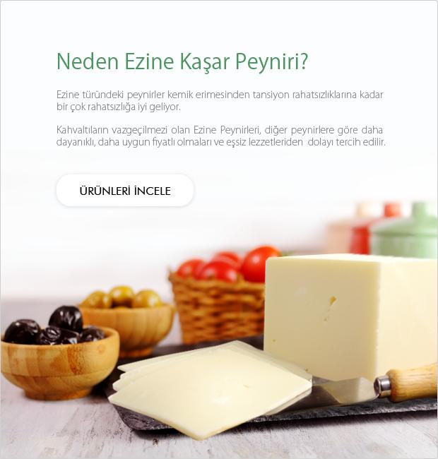 Ezine Kaşar Peyniri