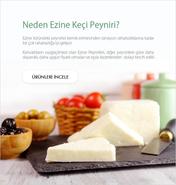 Ezine Keçi Peyniri
