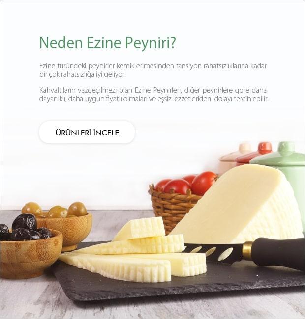 Neden Ezine Peyniri