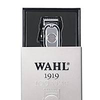 Wahl 1919 100.Yýl