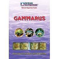 Ocean Nutrition - Gammarus 100gr 10 Küp