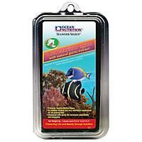 Ocean Nutrition - Red Marine Algae