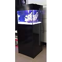 Black-K Sump Sistemli Deniz Akvaryumu