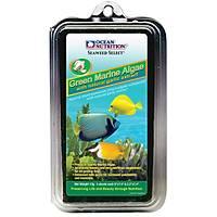 Ocean Nutrition - Green Marine Algae