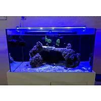 AquaLed - Led Aydýnlatma Armatür Royal Mavi 100 cm