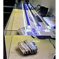 AquaLed - Led Aydýnlatma Armatür Karýþýk Renk 60 cm