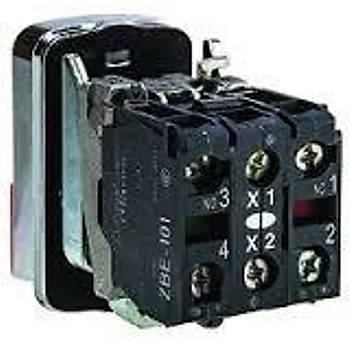 XB4BW73731M5 22mm 220VAC Ledli Start/Stop Ýkiz Buton SCHNEIDER