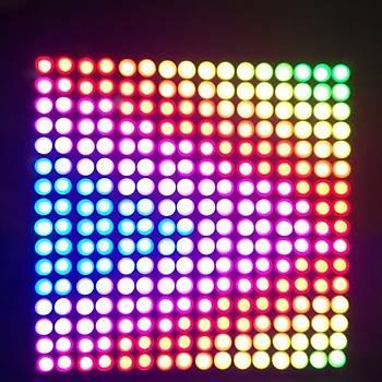 WS2812B 16x16 RGB LED Ekran