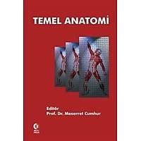 Odtü Temel Anatomi Meserret Cumhur