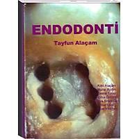 Tercih Kitabevi Yayýncýlýk Endodonti,Tayfun Alaçam