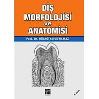 Gazi Yayýnlarý Diþ Morfolojisi ve Anatomisi Hüsnü YAVUZYILMAZ