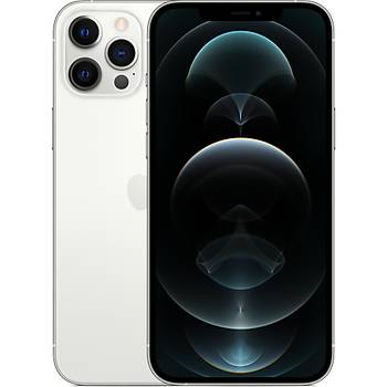 Apple iPhone 12 Pro Max 256 GB Silver MGDD3TU/A (Apple Türkiye Garantili)