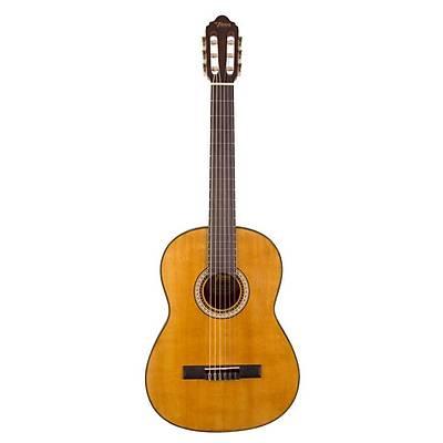 VALENCIA VC404 KLASÝK 4/4 Gitar KILIF PENA