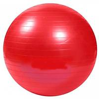 65 cm Pilates Topu Pompa Hediyeli Karýþýk Renk